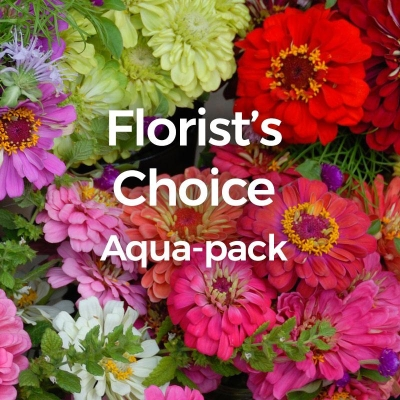 Florist Choice Aqua Pack